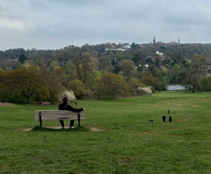 Take a break in Hampstead Heath, it's a great place to take your dog for a walk